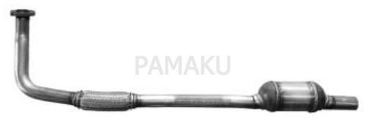 PAM1080293