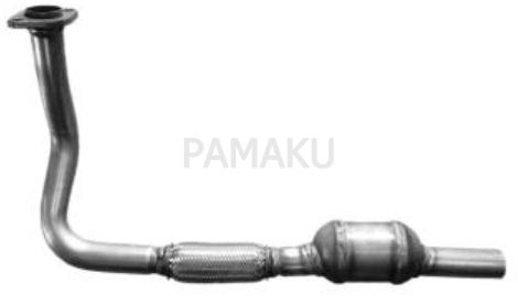 PAM1080295